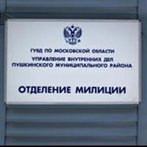 Отделения полиции Внуково