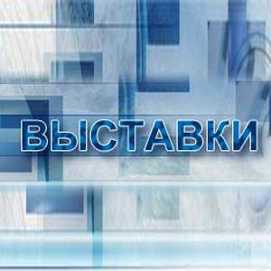 Выставки Внуково